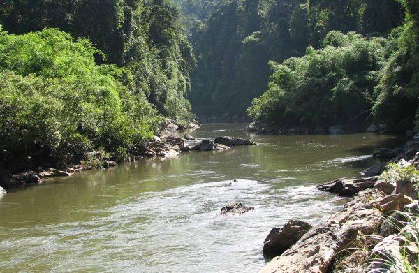 river in Champassak