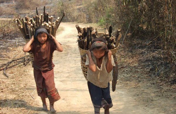 two children caring wood in Noth of Laos